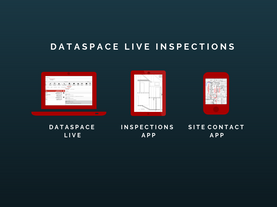 DataSpace Live (2).png