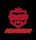 Logo CAI CLUB ACADEMY_edited.png