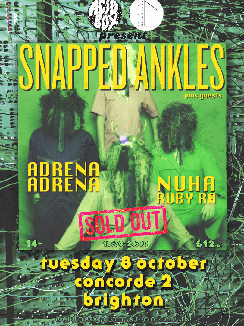 SNAPPED ANKLES POSTER sold out 8.10.19.j