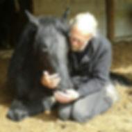 Chiropraktik Pferd Heilpraktiker Völklingen Saarland Pferdephysiotherapeut Einrenken Knochenbrecher Pferdephysiotherapie Master of Chiropractic Rückenschmerzen Bandscheibenvorfall