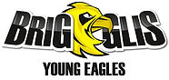 logo_young_eagles.jpg