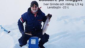 Ivar Grinde