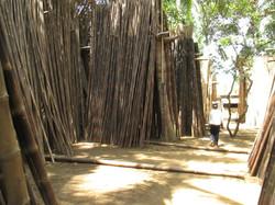 Bamboo Yard