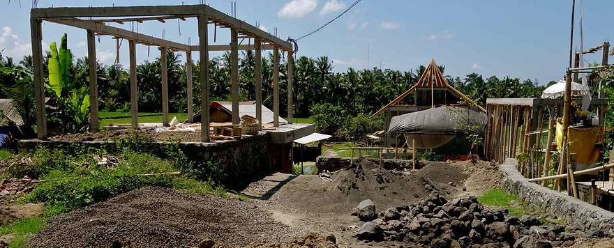 bali sawah rice paddy overdevelopment
