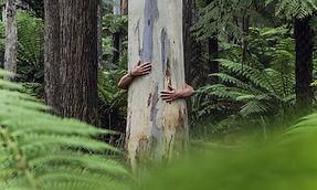 woman-hugging-a-tree.jpg