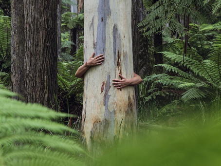 Are authentic people more ecologically sensitive?