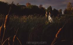 Jodie & Rob Wedding (234)