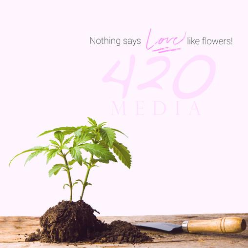 Social media for 420media.us