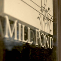 Mill Pond Anniversary Dinner for Two