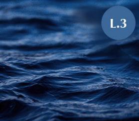 WEBSITE_LEVEL3.jpg