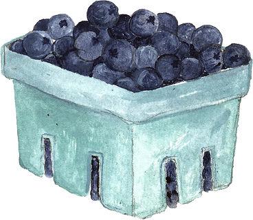 BlueberryPint.jpg