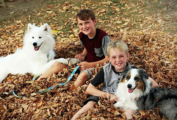 Kids playing with dogs in leaves.jpg
