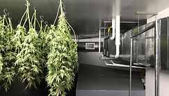 Dry Room Climate Control Systems