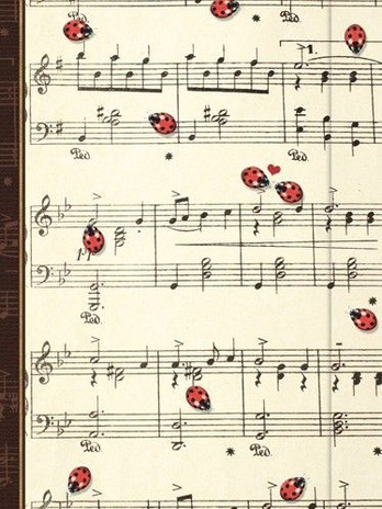 Small Journal - Serenade - 03-03-48-01.j