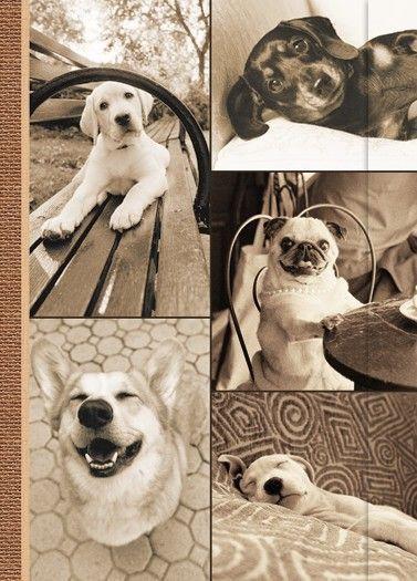 Small Journal - My Best Friends - 03-03-
