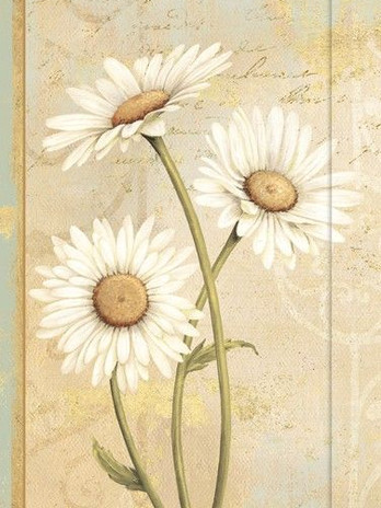Small Journal - Beautiful Daisies - 03-0