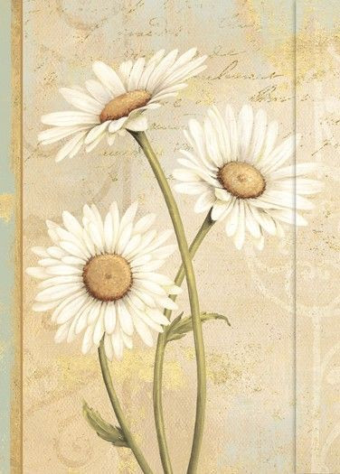 Small Journal - Beautiful Daisies - 03-0