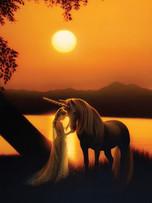 Journal - Enchanted Evening