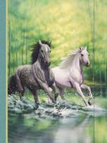 Small Journal - Morning Gallops