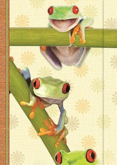 Small Journal - Trio Funky - 03-03-46-01