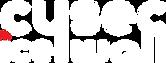 CySec Icewall Oy Logo white.png