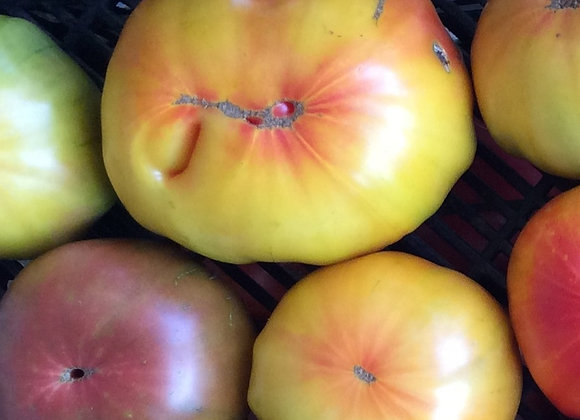 HEIRLOOM TOMATO FLATS