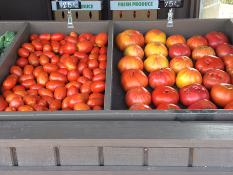 TOMATOES! CASES OF TOMATOES!
