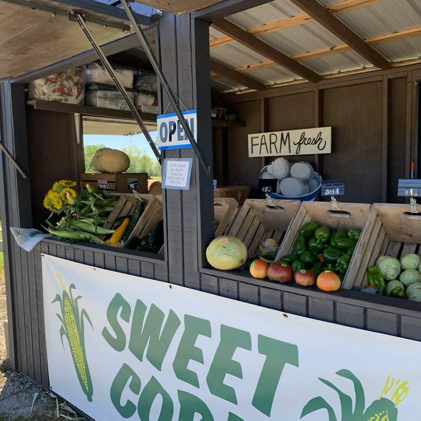 FARM STAND OPEN FOR SUMMER & FALL