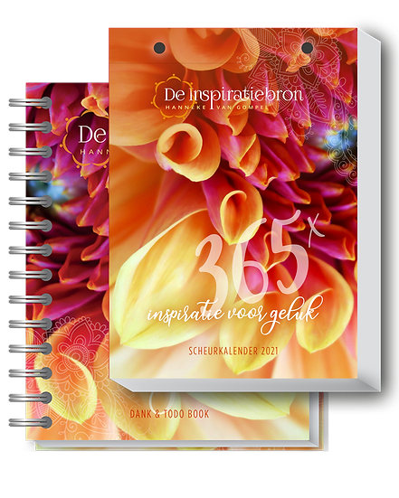 Agenda&ToDo book 2021 + Scheurkalender 2021