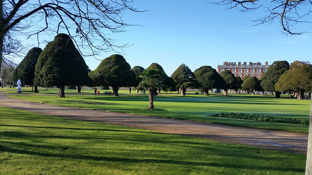 Hampton Court Palace - Trees