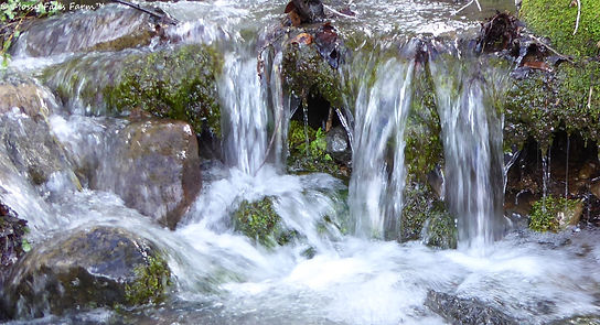 Mossy Falls Waterfalls