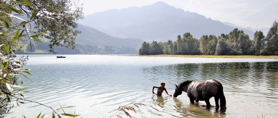 Lac de Gruyère