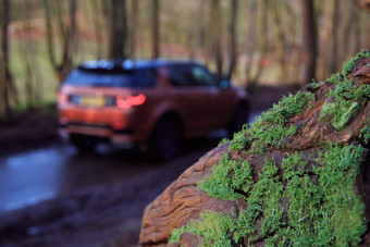 Land Rover Discovery Sport-232.jpg
