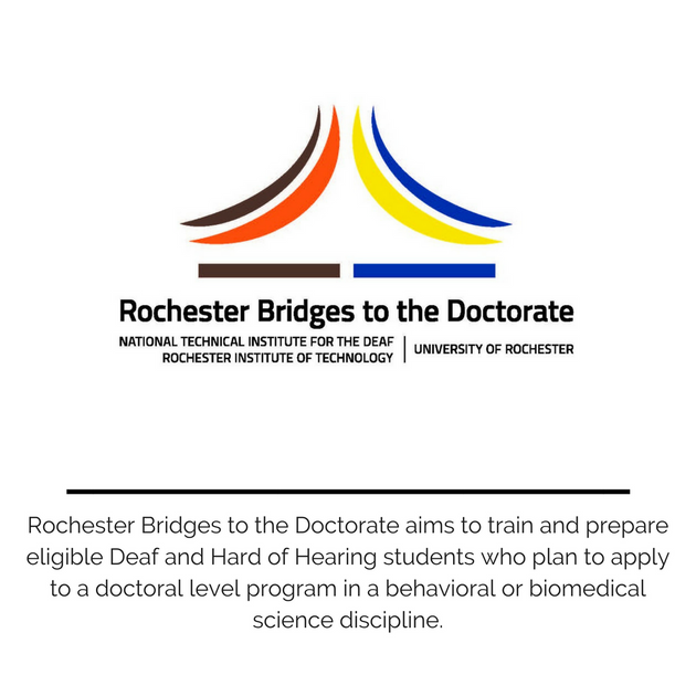 Rochester Bridges to the Doctorate