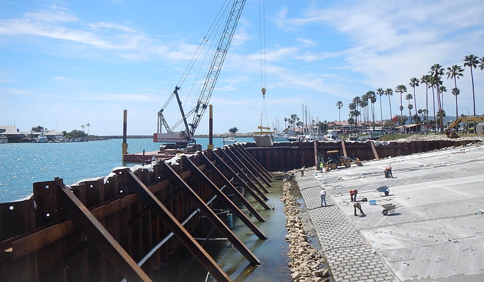 Ventura image 7
