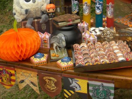 Olha só os produtos que achamos para nossa Festa - Harry Potter