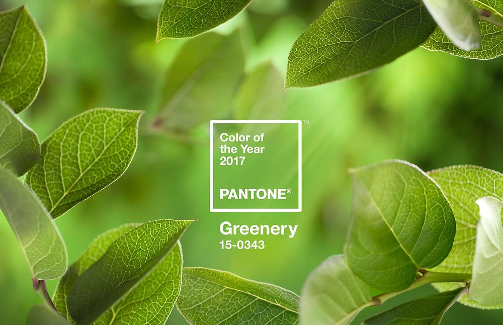 Greenery cor do ano 2017