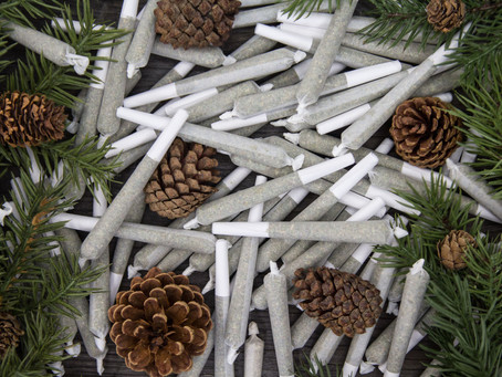 Introducing Tree-Rolls® Hemp Company