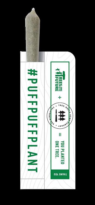 Tree-Rolls-Hemp-CBD-Pre-Joint-Lavender-H