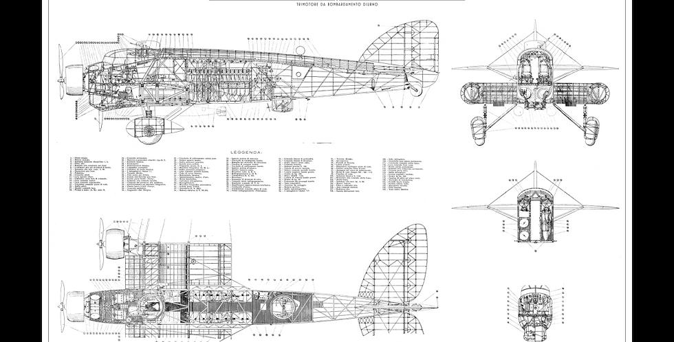 Savoia Marchetti S.81