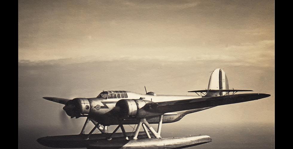 "C.A.N.T. Z-506 ""Airone"""
