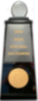 Worlds Trophy Cutout shadow.png