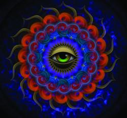 eyeInsertsmall