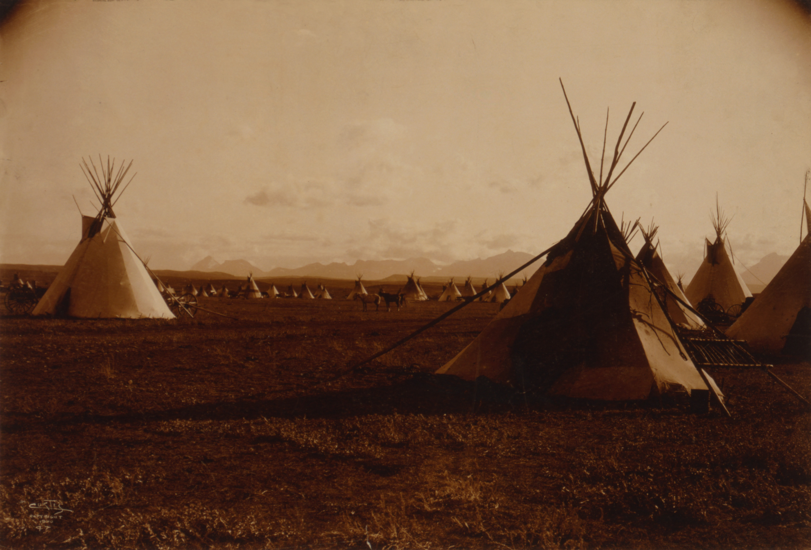 Edward_S._Curtis,_Piegan_encampment,_1900