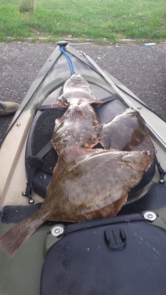 Successful day Floundering