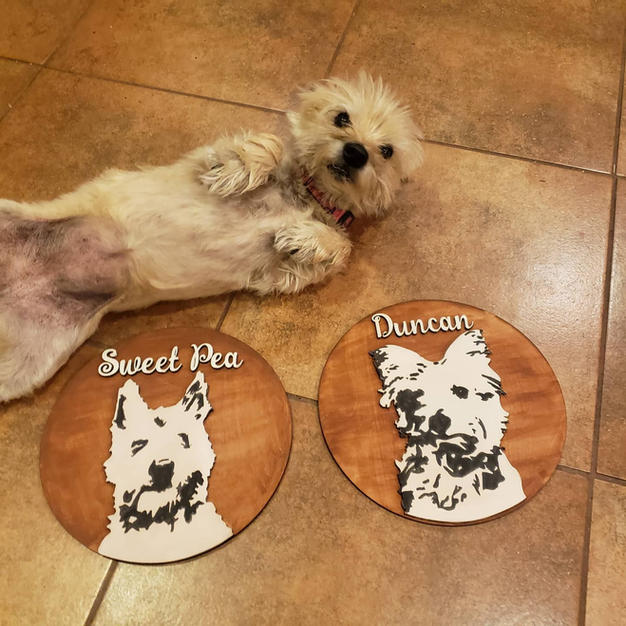 Personalized Pet sign- round
