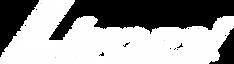 295C-Livorsi-logo plain white.png