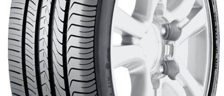 Maxxis Victra M36