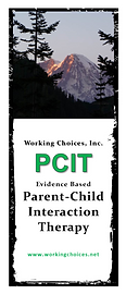 PCIT Brochure Cover 2019.png