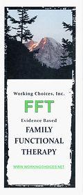 FFT Brochure Cover.jpg